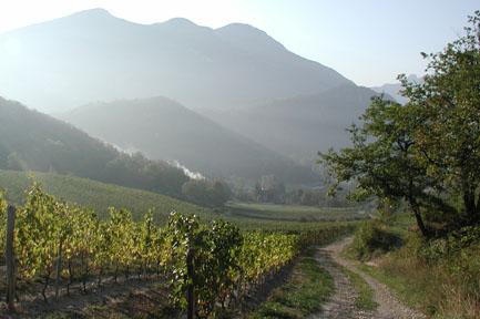 Jakobsweg Frankreich: Rhonetal